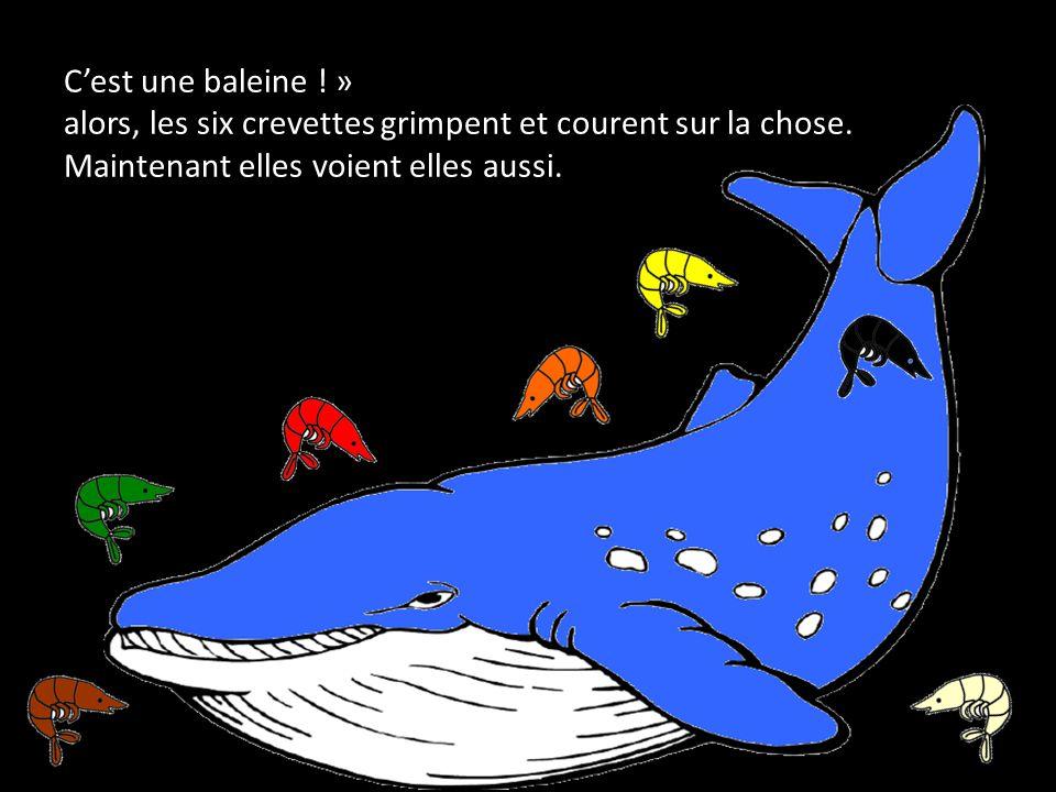 Cest une baleine . » alors, les six crevettes grimpent et courent sur la chose.