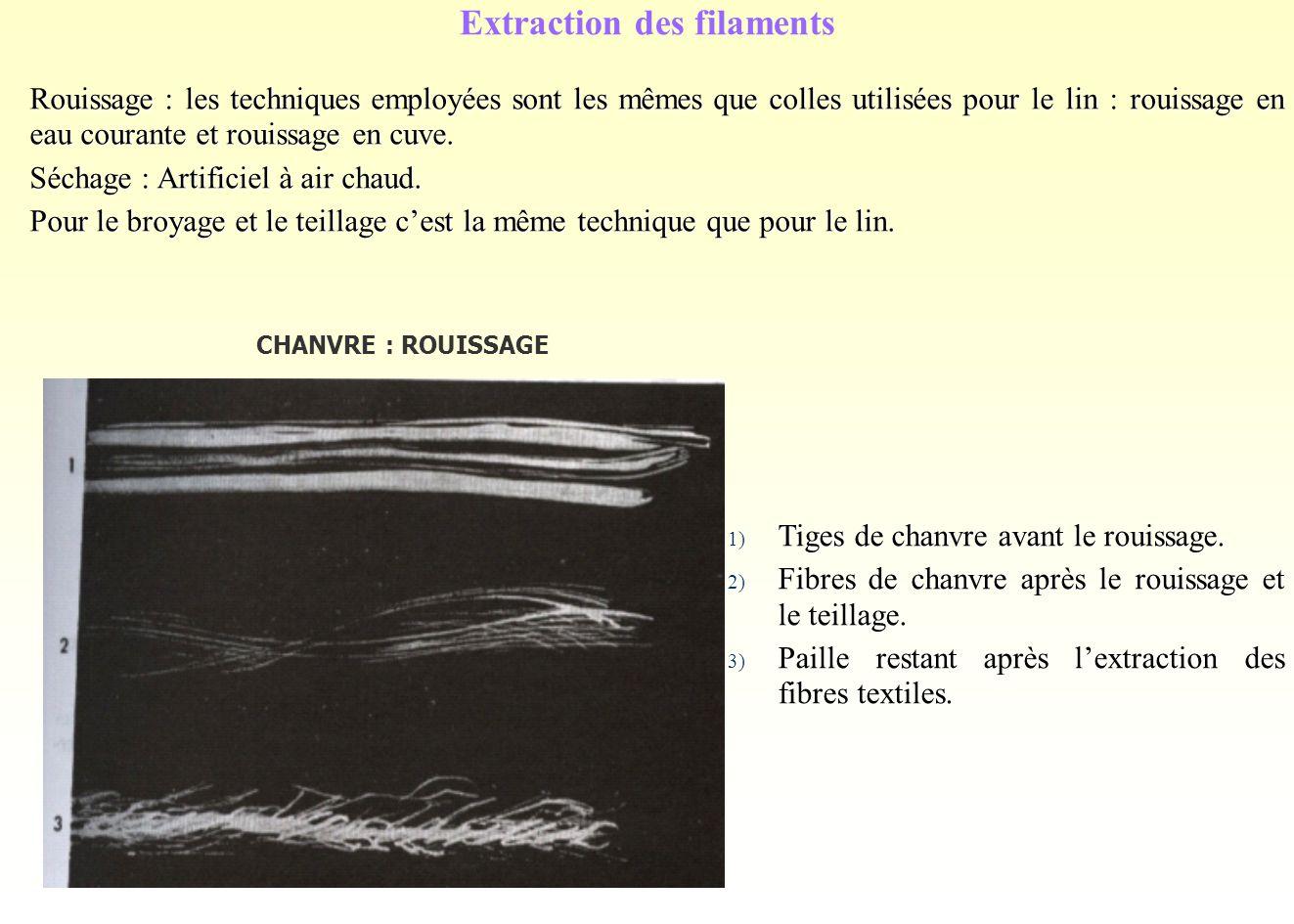 Extraction des filaments Rouissage : les techniques employées sont les mêmes que colles utilisées pour le lin : rouissage en eau courante et rouissage