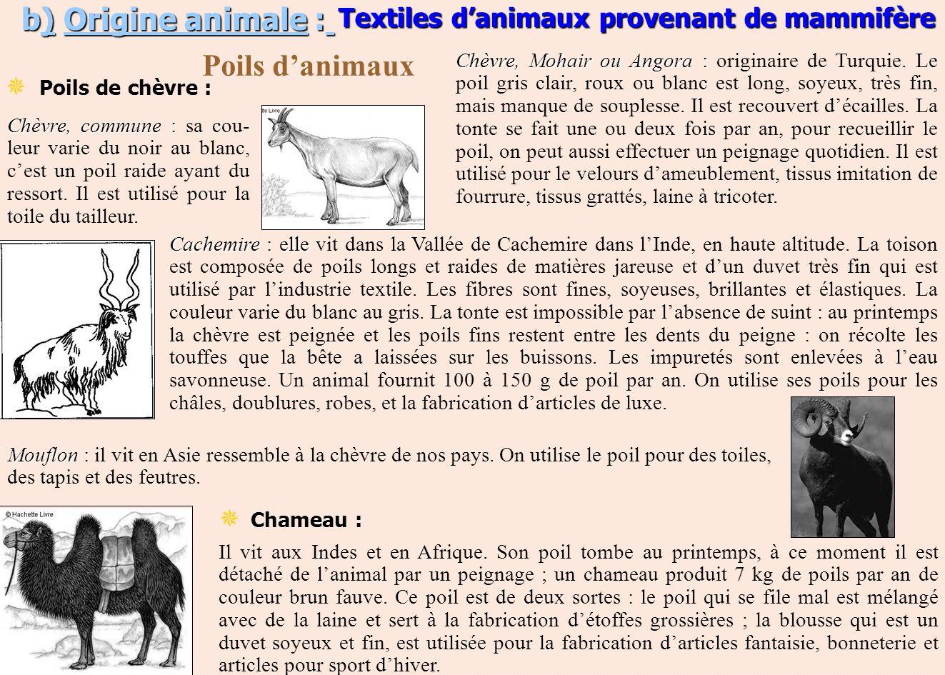 b) Origine animale : Poils danimaux Mouflon : Mouflon : il vit en Asie ressemble à la chèvre de nos pays. On utilise le poil pour des toiles, des tapi