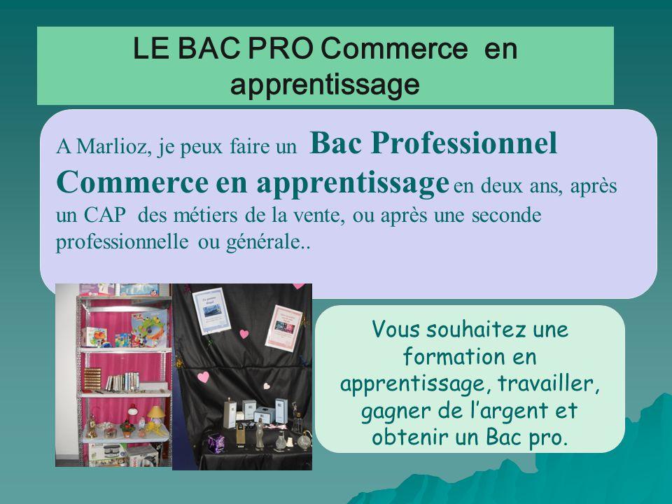 LE BAC PRO Commerce en apprentissage A Marlioz, je peux faire un Bac Professionnel Commerce en apprentissage en deux ans, après un CAP des métiers de la vente, ou après une seconde professionnelle ou générale..