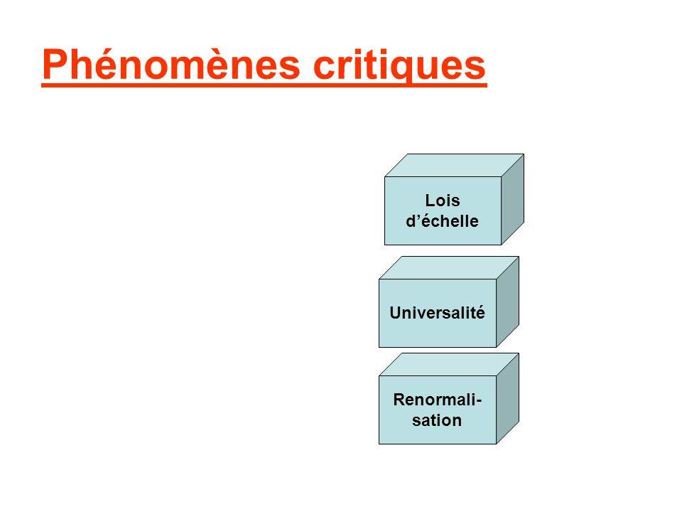Phénomènes critiques Lois déchelle Universalité Renormali- sation