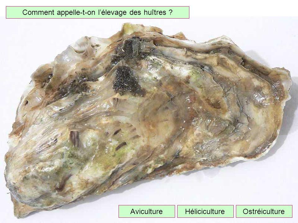 Quel métal produit-on avec la bauxite ? Fer Aluminium Cuivre