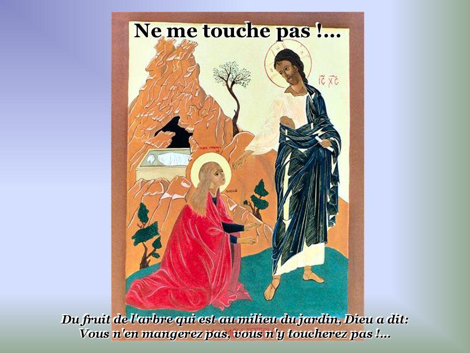 Ne me touche pas !… Du fruit de l arbre qui est au milieu du jardin, Dieu a dit: Vous n en mangerez pas, vous n y toucherez pas !…