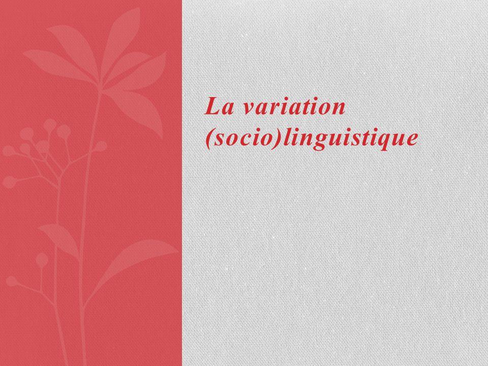 La variation (socio)linguistique