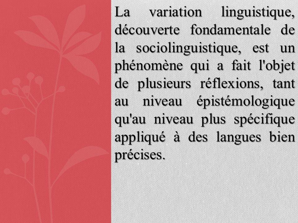 La variation linguistique, découverte fondamentale de la sociolinguistique, est un phénomène qui a fait l'objet de plusieurs réflexions, tant au nivea