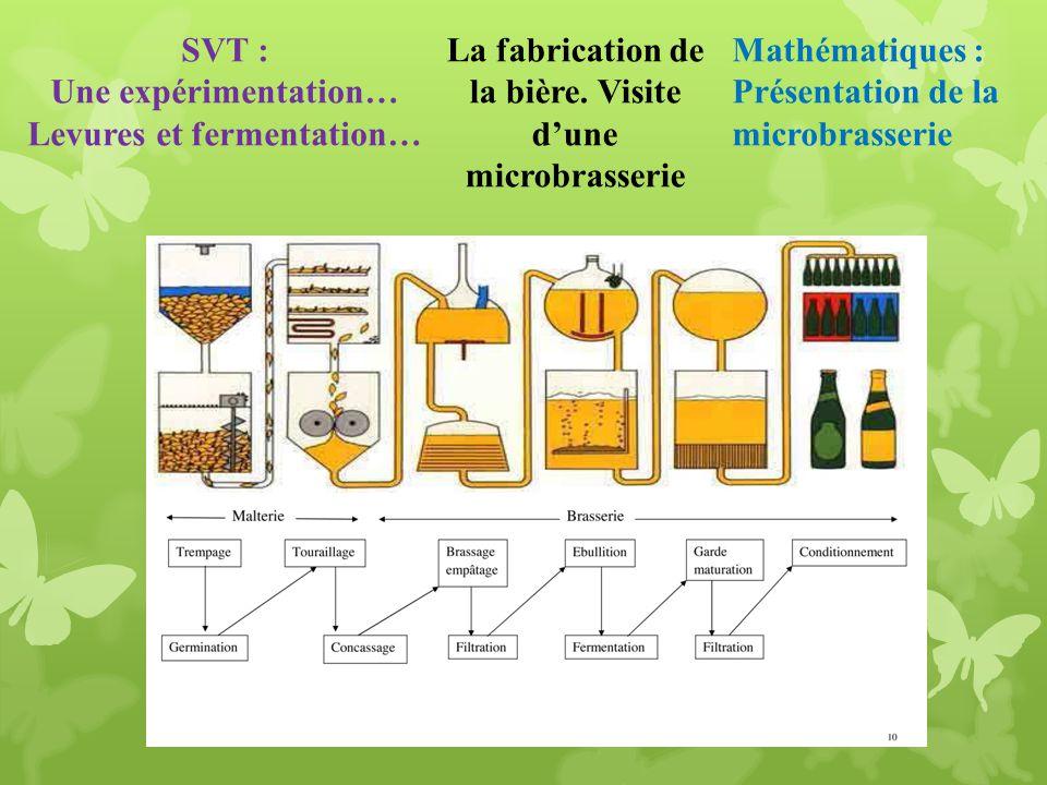Mathématiques : Présentation de la microbrasserie La fabrication de la bière. Visite dune microbrasserie SVT : Une expérimentation… Levures et ferment