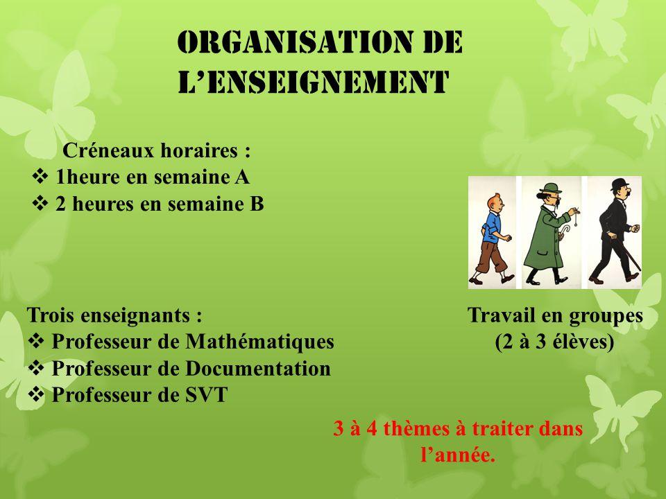 Organisation de lenseignement Travail en groupes (2 à 3 élèves) Créneaux horaires : 1heure en semaine A 2 heures en semaine B Trois enseignants : Prof