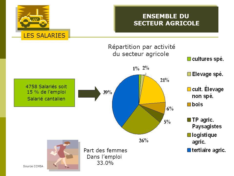 ENSEMBLE DU SECTEUR AGRICOLE Source CCMSA 4758 Salariés soit 15 % de lemploi Salarié cantalien Part des femmes Dans lemploi 33.0% LES SALARIES Réparti