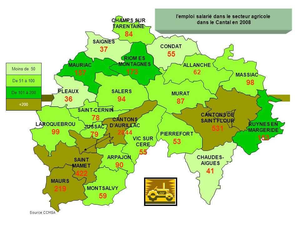 CONDAT 21.8% RIOM ES MONTAGNES 24.9% SALERS 17% CHAMPS SUR TARENTAINE 4.8% SAIGNES 10.8% MAURIAC 21.7% PLEAUX 16.7% ALLANCHE 17.7% MASSIAC 29.6% CANTONS DAURILLAC 48% RUYNES EN MARGERIDE 9.8% CHAUDES- AIGUES 19.5% MURAT 12.6% PIERREFORT 3.8% LAROQUEBROU 9.1% SAINT-CERNIN 23.1% VIC SUR CERE 25.5% ARPAJON 5.6% MONTSALVY 20.3% MAURS 46.1% SAINT MAMET 20.9% JUSSAC 15.2% CANTONS DE SAINT FLOUR 19% Part des femmes dans lemploi salarié agricole par canton en 2008 Part départementale des femmes salariées 33% Part départementale des femmes salariées 33% Part des femmes supérieure à 33% Part des femmes inférieure à 33% Source CCMSA