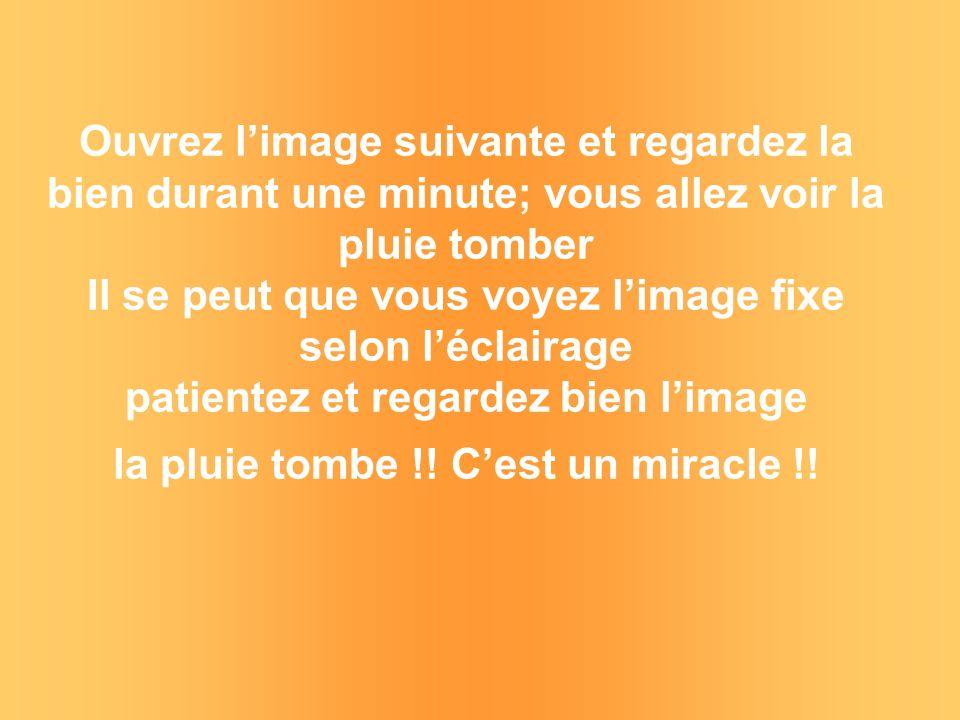 Miracle >.. Voici des peintures de Thomas Kinkade Regardez ! Cela ressemble à un miracle !!