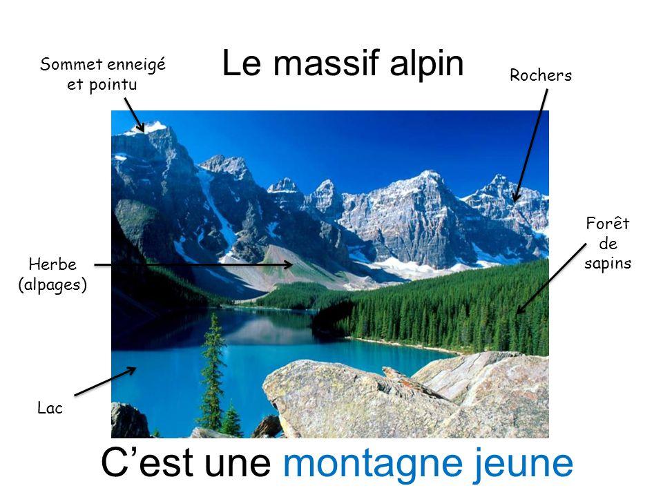 Le massif alpin Sommet enneigé et pointu Rochers Herbe (alpages) Forêt de sapins Lac Cest une montagne jeune