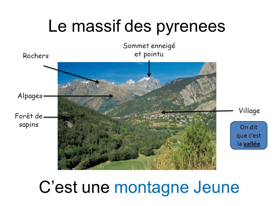LeS Monts du Jura Sommet arboré et arrondi Village en bas de la montagne Cest une montagne ancienne Forêt de feuillus (arbres avec des feuilles) et de sapins
