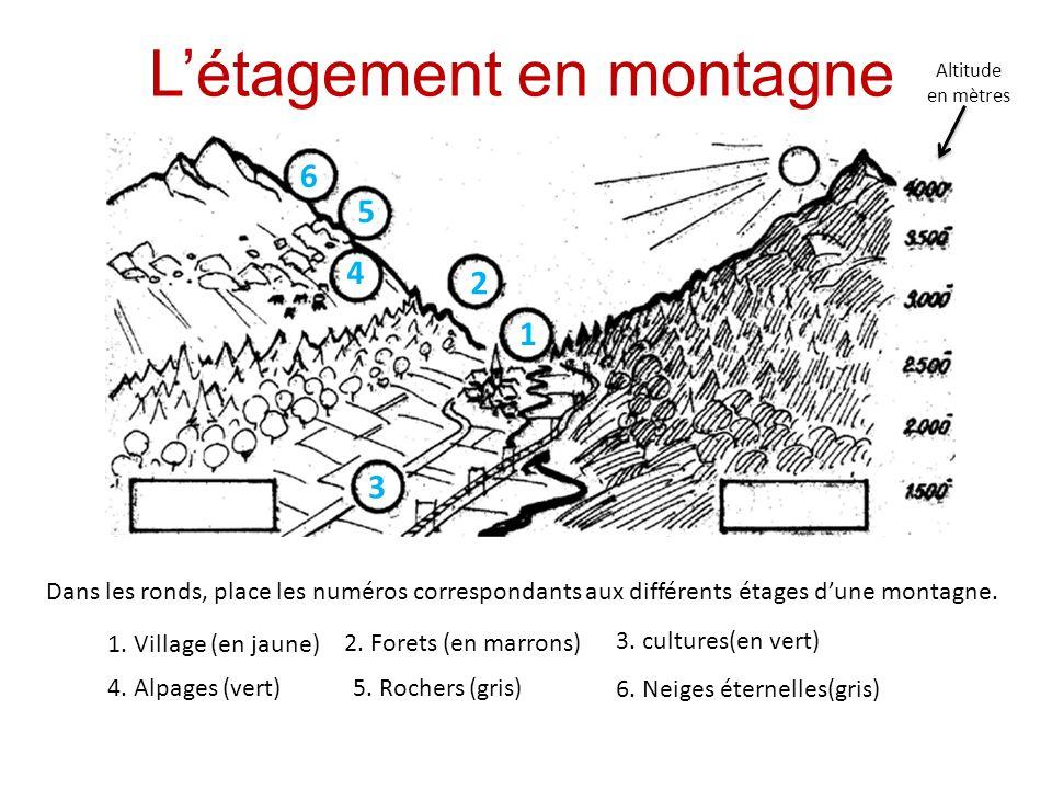 Létagement en montagne 1.
