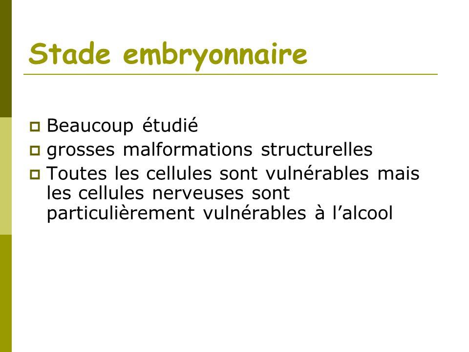Stade embryonnaire Beaucoup étudié grosses malformations structurelles Toutes les cellules sont vulnérables mais les cellules nerveuses sont particuli