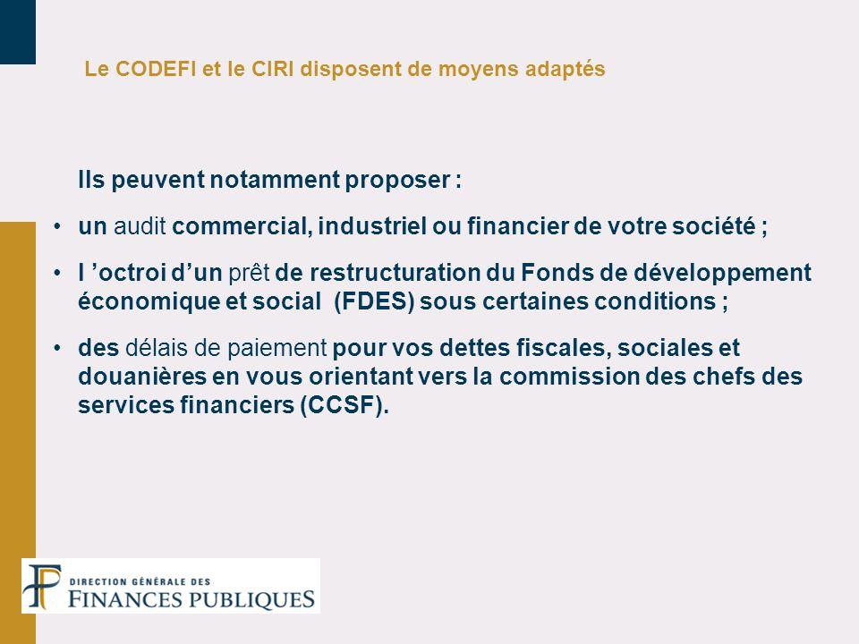 Le CODEFI et le CIRI disposent de moyens adaptés Ils peuvent notamment proposer : un audit commercial, industriel ou financier de votre société ; l oc