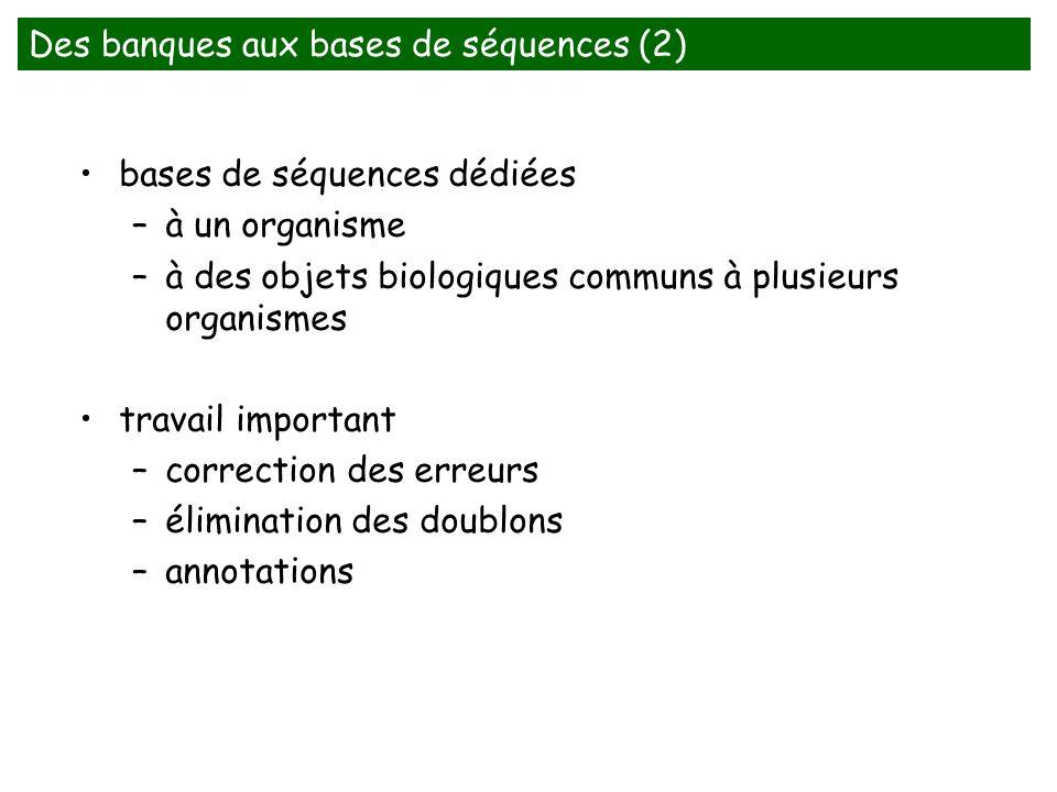 bases de séquences dédiées –à un organisme –à des objets biologiques communs à plusieurs organismes travail important –correction des erreurs –élimination des doublons –annotations Des banques aux bases de séquences (2)