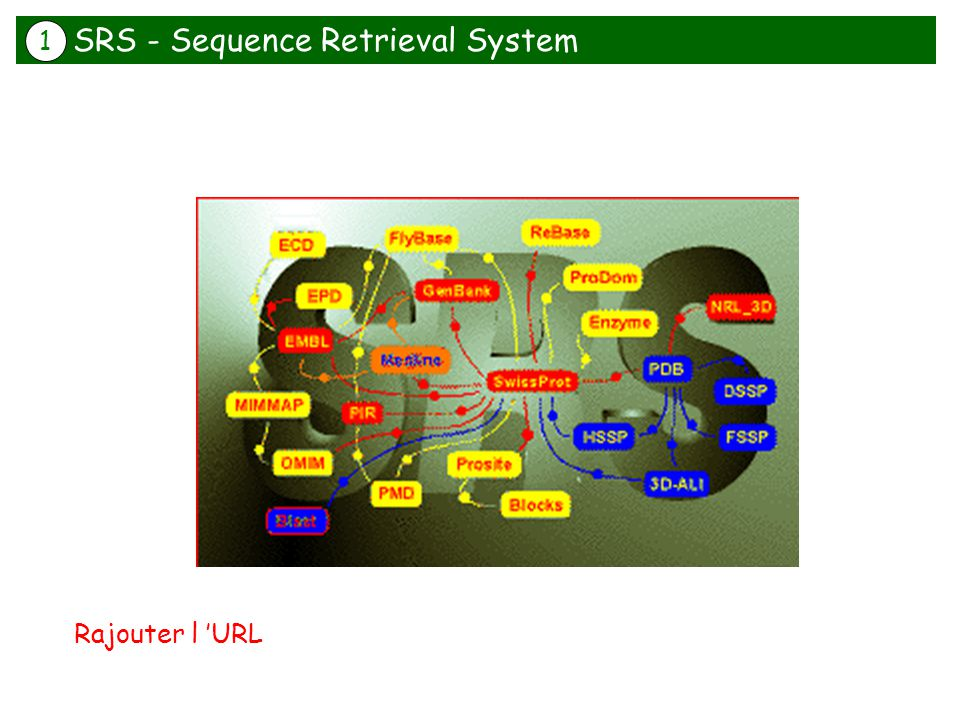 SRS - Sequence Retrieval System Rajouter l URL 1