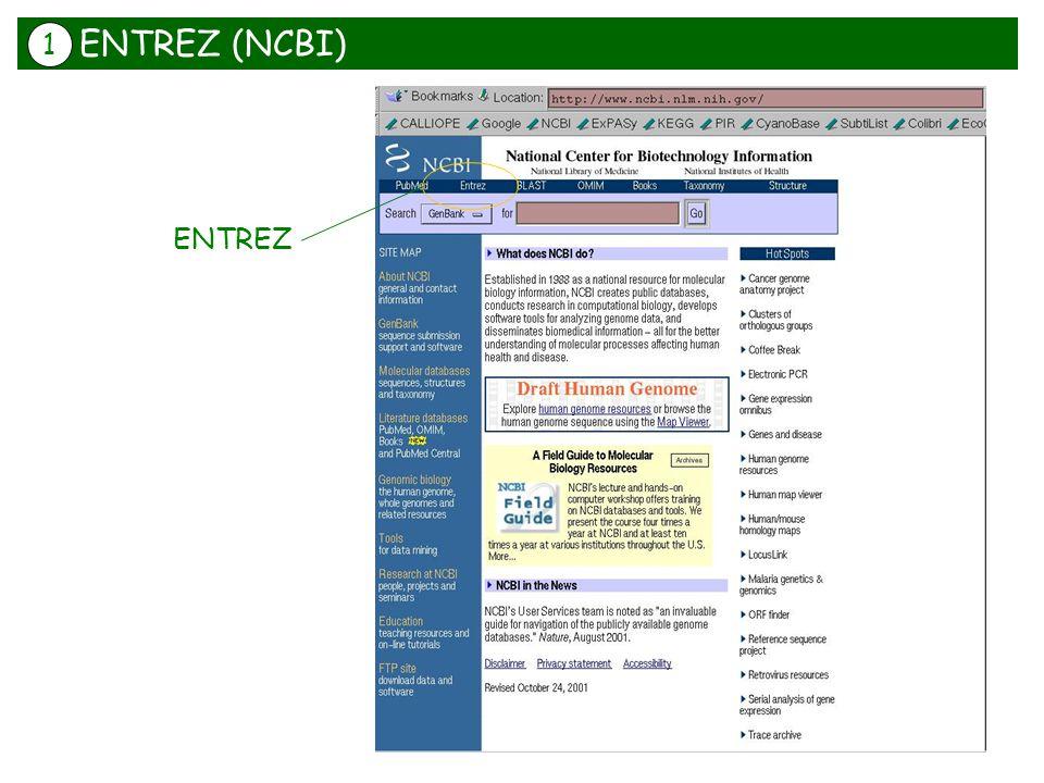 ENTREZ ENTREZ (NCBI) 1
