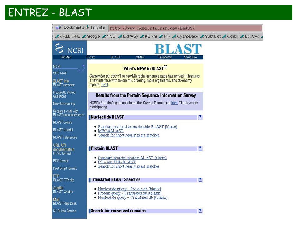 ENTREZ - BLAST