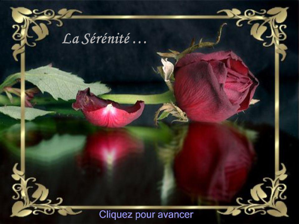 Chanson De Pier Béland La Sérénité Montage Claire De La chevrotière http://lumau2.com/Diapo.html