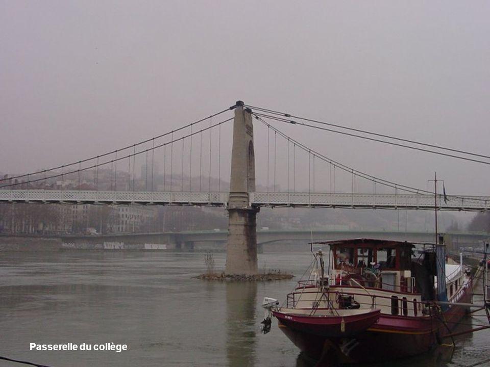 Vue du Rhône