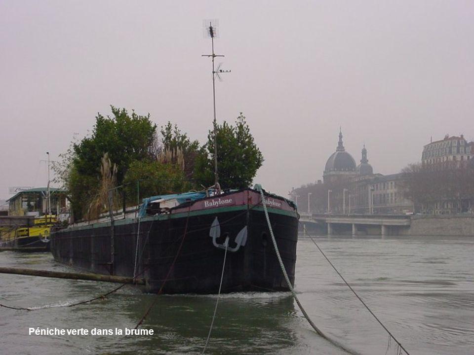 Port illuminé sur le Rhône
