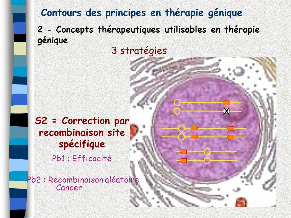 Contours des principes en thérapie génique 2 - Concepts thérapeutiques utilisables en thérapie génique 3 stratégies X S2 = Correction par recombinaiso