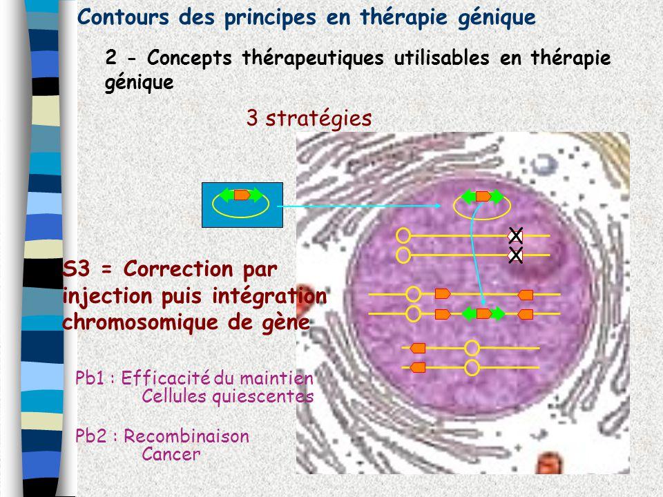 Contours des principes en thérapie génique 2 - Concepts thérapeutiques utilisables en thérapie génique 3 stratégies X X S3 = Correction par injection