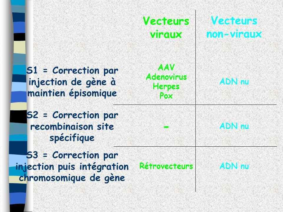 S3 = Correction par injection puis intégration chromosomique de gène S2 = Correction par recombinaison site spécifique S1 = Correction par injection d