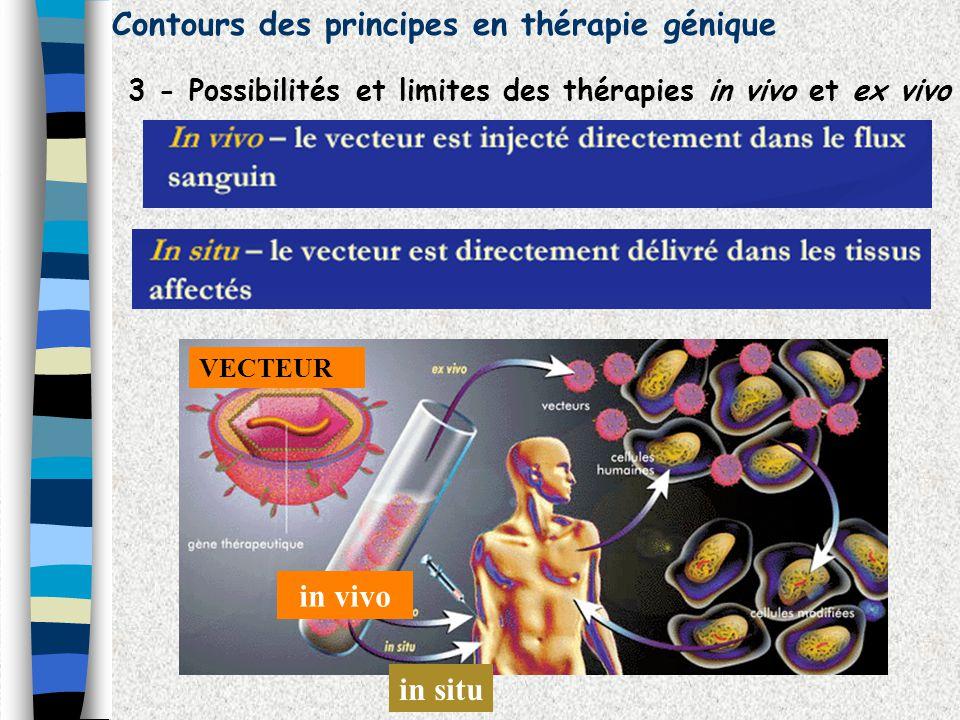 Contours des principes en thérapie génique 3 - Possibilités et limites des thérapies in vivo et ex vivo in vivo VECTEUR in situ
