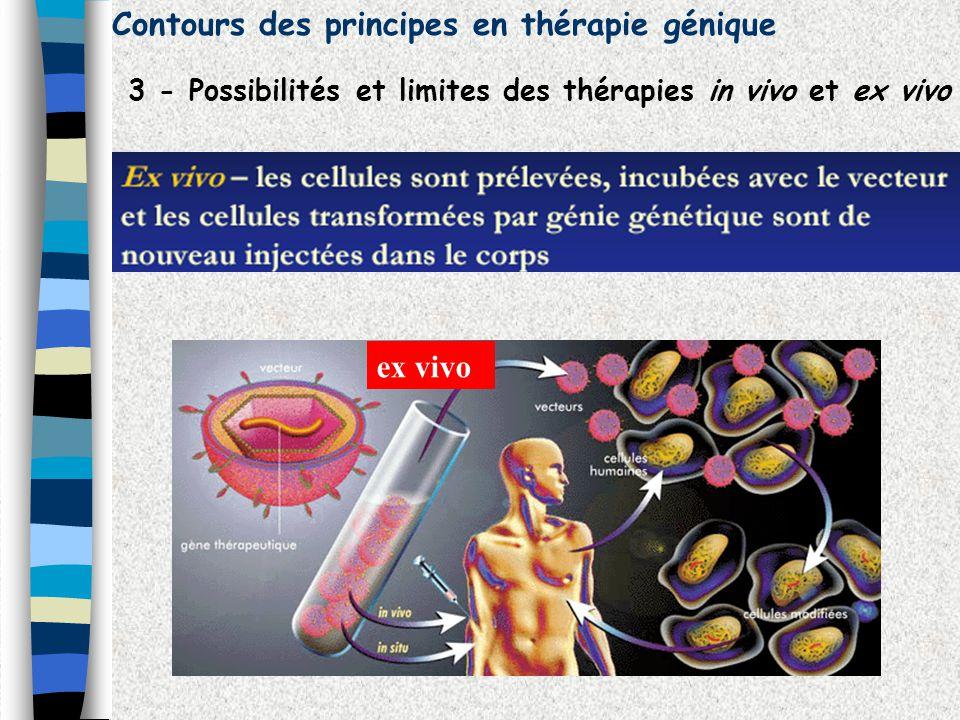 Contours des principes en thérapie génique 3 - Possibilités et limites des thérapies in vivo et ex vivo ex vivo