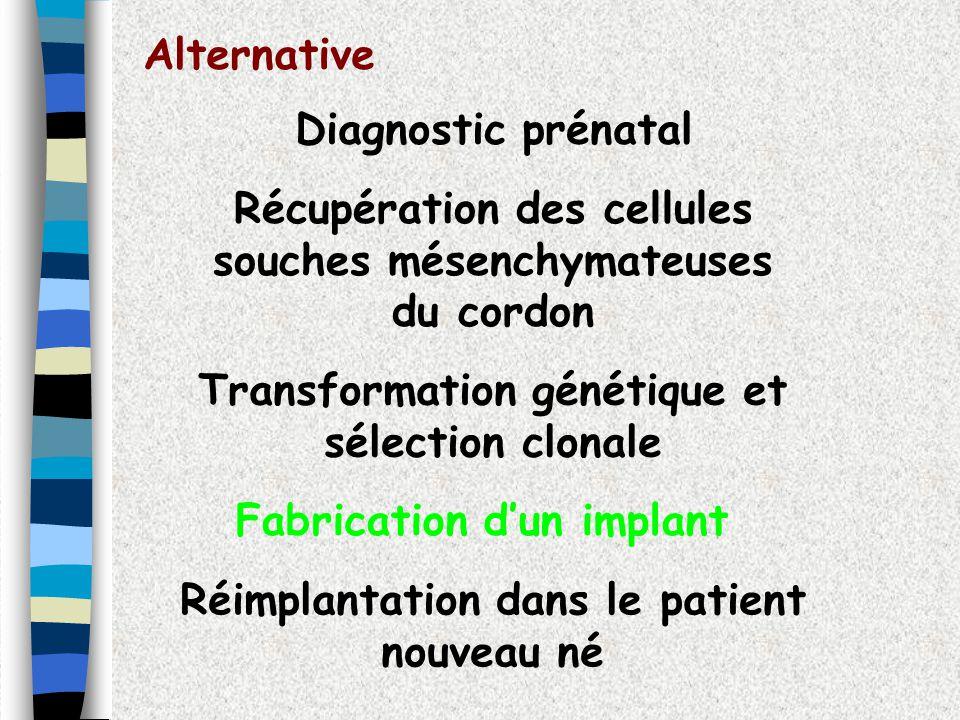 Alternative Diagnostic prénatal Récupération des cellules souches mésenchymateuses du cordon Transformation génétique et sélection clonale Réimplantat