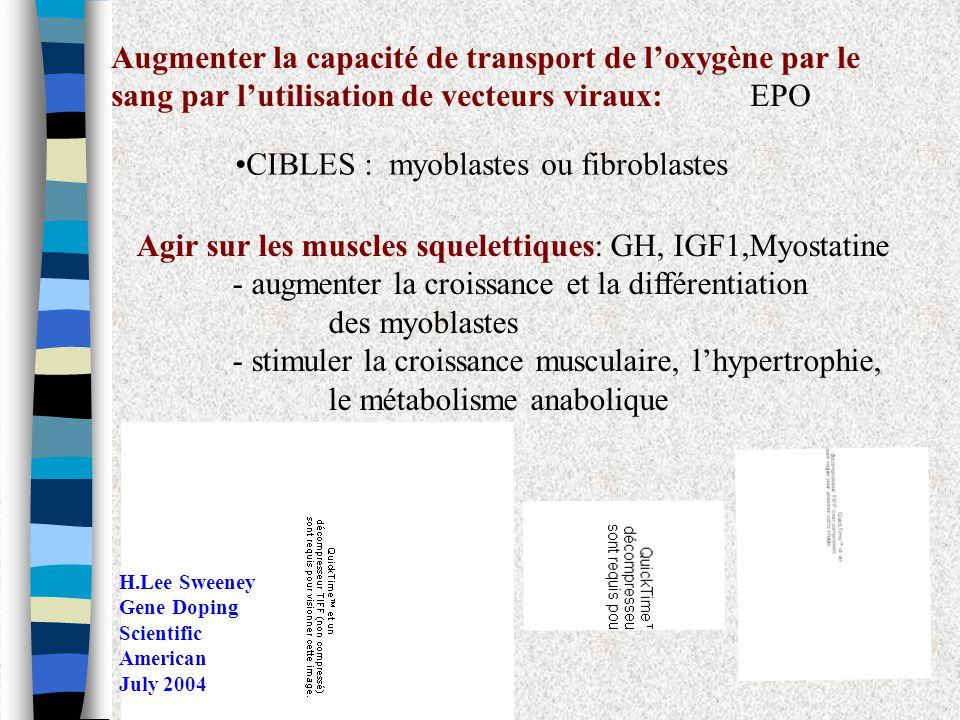 Augmenter la capacité de transport de loxygène par le sang par lutilisation de vecteurs viraux: EPO CIBLES : myoblastes ou fibroblastes Agir sur les m