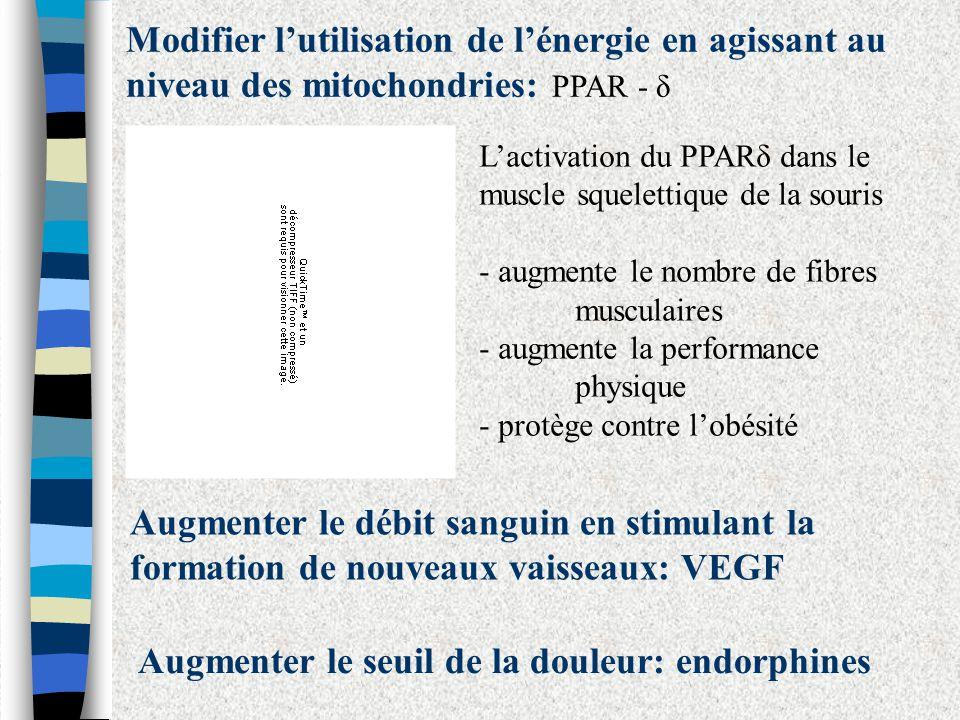 Modifier lutilisation de lénergie en agissant au niveau des mitochondries: PPAR - δ Lactivation du PPARδ dans le muscle squelettique de la souris - au