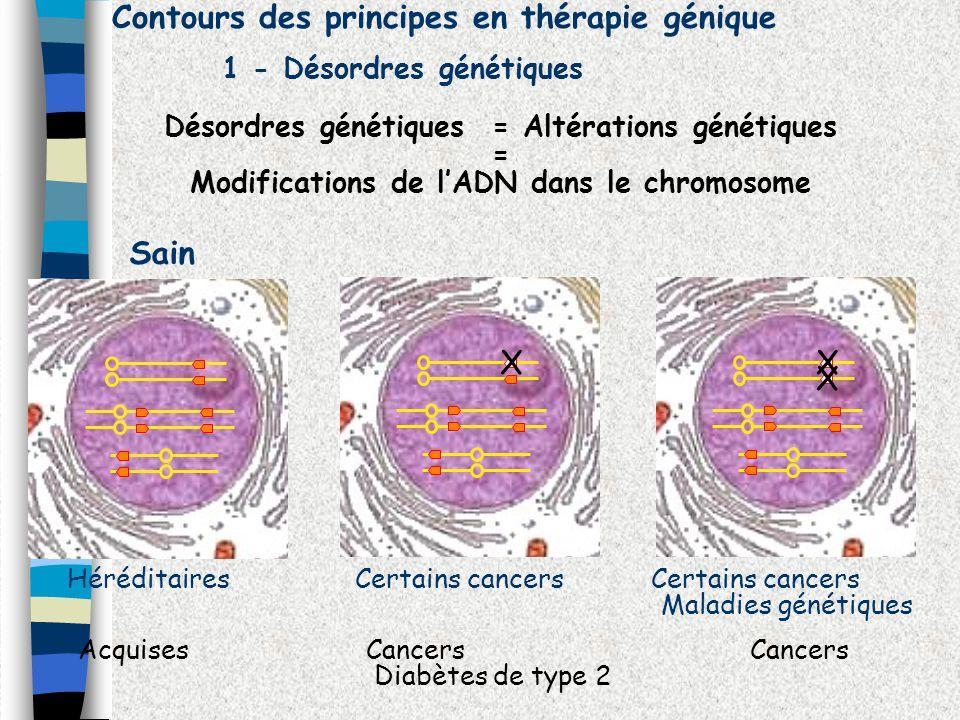 Sain Contours des principes en thérapie génique 1 - Désordres génétiques Désordres génétiques = Altérations génétiques = Modifications de lADN dans le