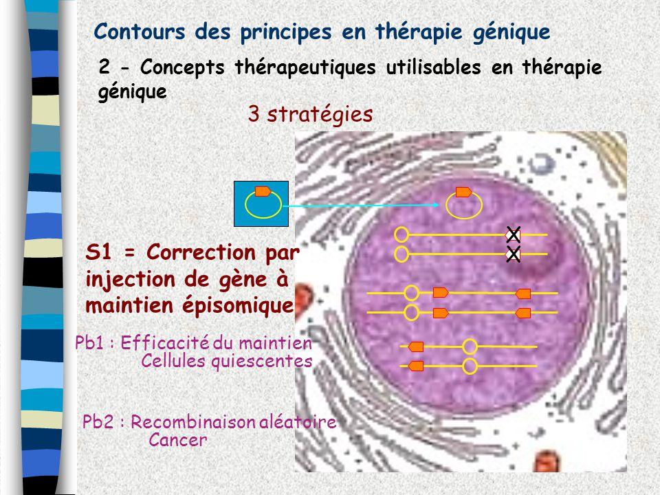 Contours des principes en thérapie génique 2 - Concepts thérapeutiques utilisables en thérapie génique 3 stratégies X X S2 = Correction par recombinaison site spécifique