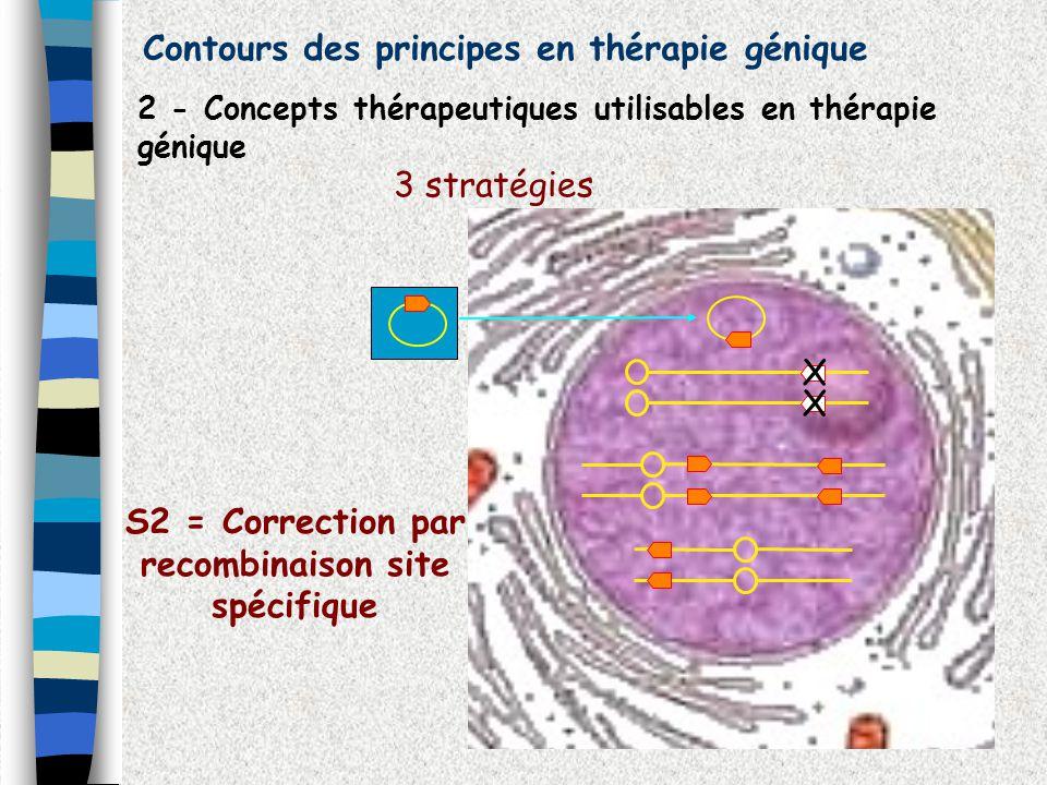 Contours des principes en thérapie génique 2 - Concepts thérapeutiques utilisables en thérapie génique 3 stratégies X X S2 = Correction par recombinai