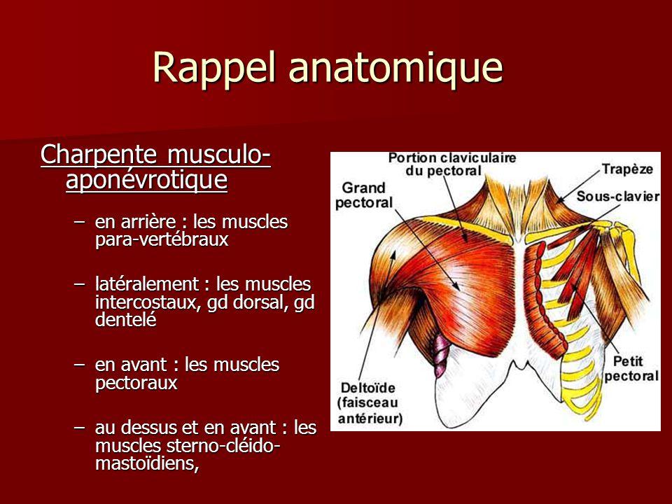 Rappel anatomique La cage thoracique : - maintien et protection des organes vitaux et structures viscérales viscérales - Mécanique ventilatoire