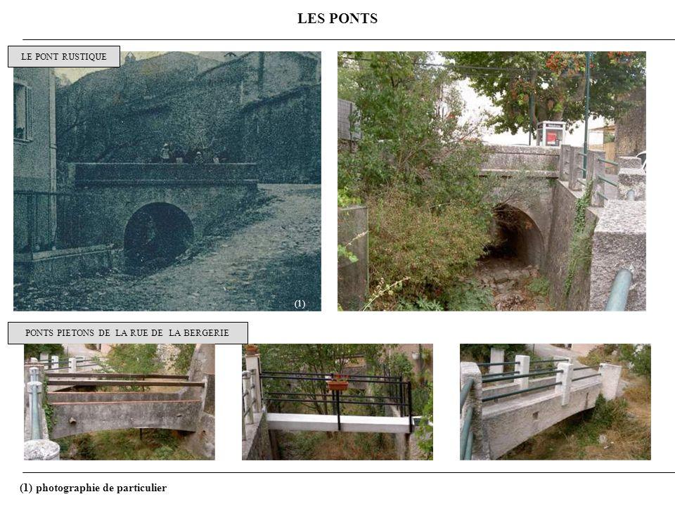 LES PONTS LE PONT RUSTIQUE PONTS PIETONS DE LA RUE DE LA BERGERIE (1) (1) photographie de particulier