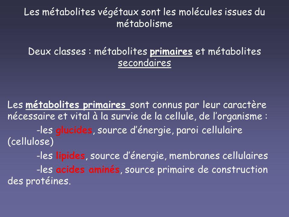 Les métabolites végétaux sont les molécules issues du métabolisme Deux classes : métabolites primaires et métabolites secondaires Les métabolites prim