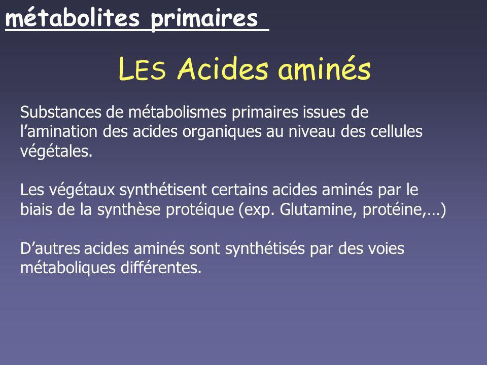 L ES Acides aminés Substances de métabolismes primaires issues de lamination des acides organiques au niveau des cellules végétales. Les végétaux synt
