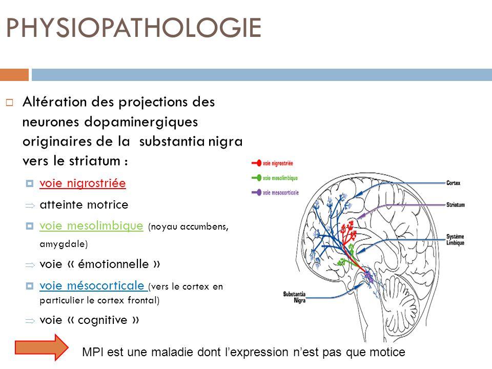 PHYSIOPATHOLOGIE Altération des projections des neurones dopaminergiques originaires de la substantia nigra vers le striatum : voie nigrostriée attein