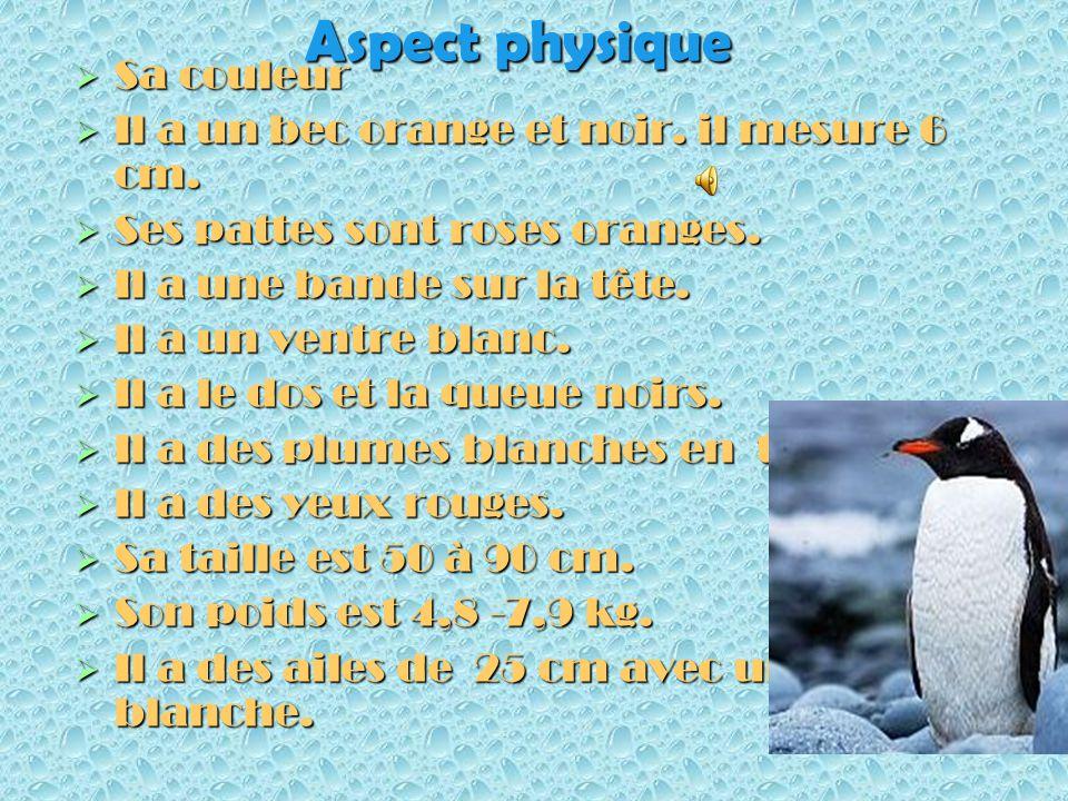 Bonjour chers camarades Aujourdhui, je vais vous parler du manchot papou. Jai choisi cet animal parce que je laime. Cest lanimal préféré de mon frère.
