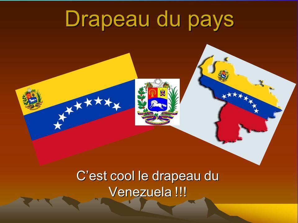 Drapeau du pays Cest cool le drapeau du Venezuela !!!