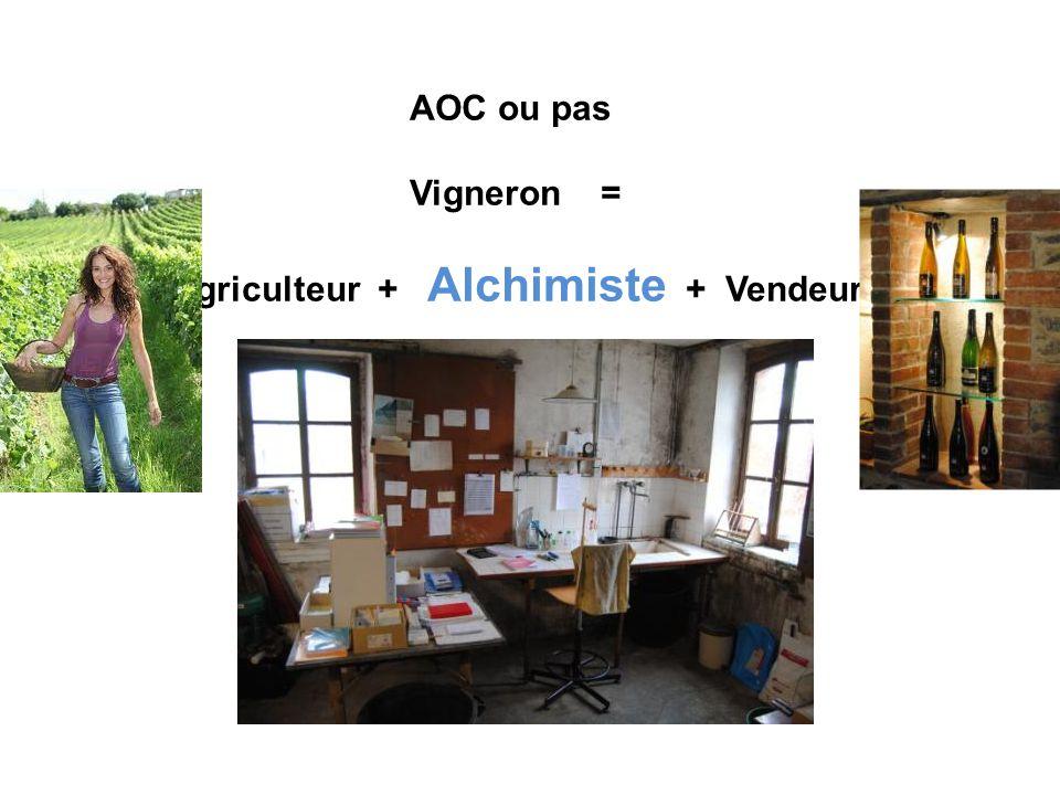 AOC ou pas Vigneron = Agriculteur + Alchimiste + Vendeur