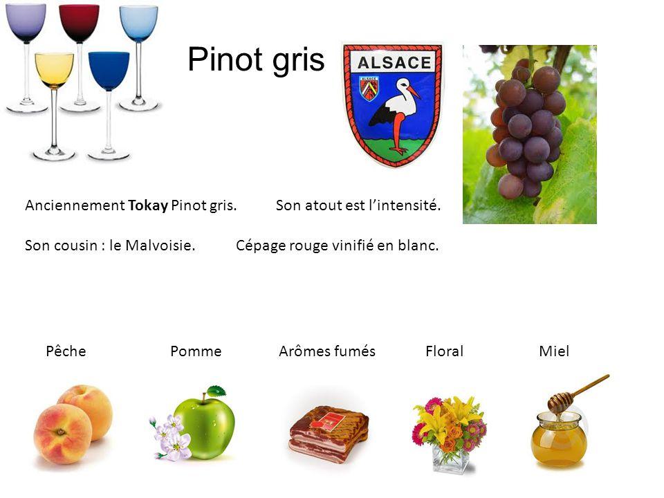 Pinot gris Anciennement Tokay Pinot gris. Son atout est lintensité. Son cousin : le Malvoisie. Cépage rouge vinifié en blanc. Pêche Pomme Arômes fumés