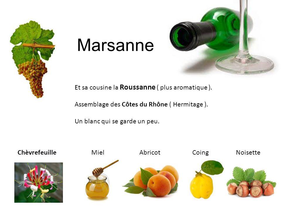Marsanne Et sa cousine la Roussanne ( plus aromatique ). Assemblage des Côtes du Rhône ( Hermitage ). Un blanc qui se garde un peu. Chèvrefeuille Miel