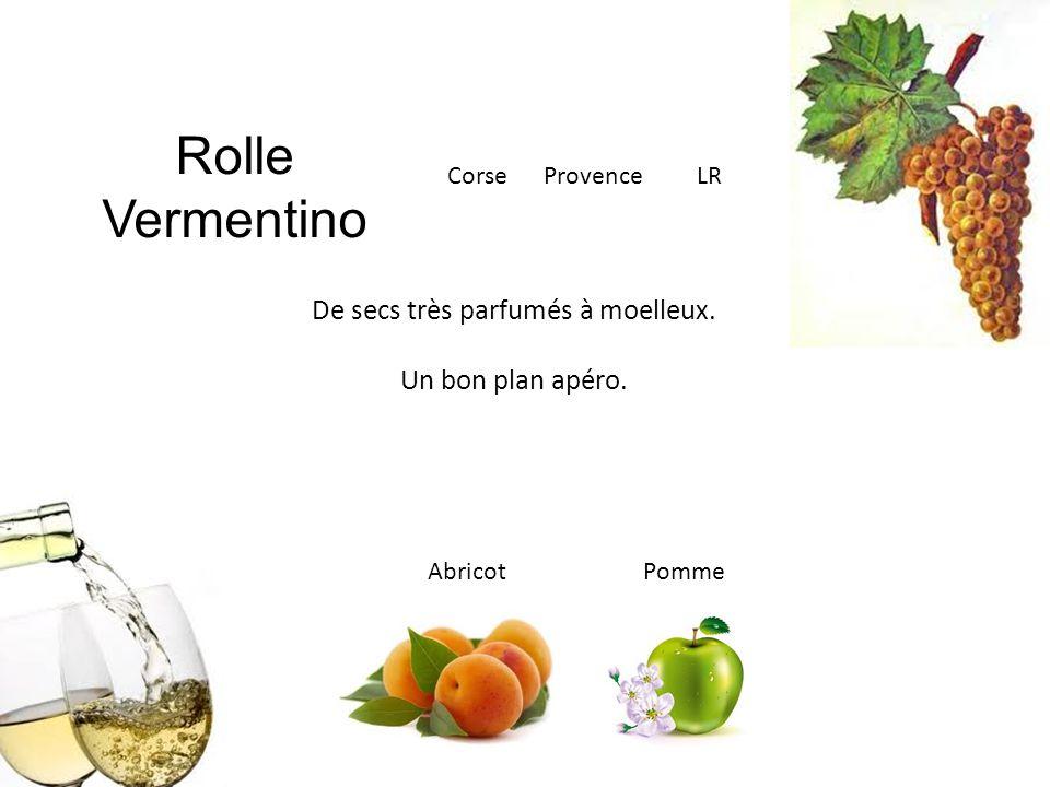 Rolle Vermentino Corse Provence LR De secs très parfumés à moelleux. Un bon plan apéro. Abricot Pomme