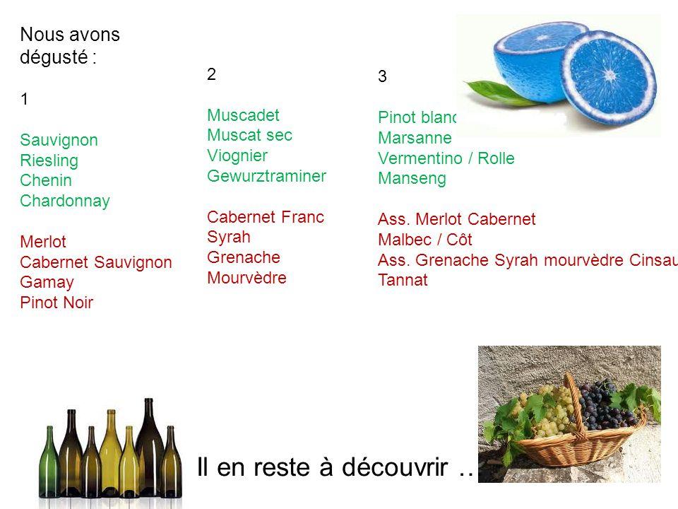 Nous avons dégusté : 1 Sauvignon Riesling Chenin Chardonnay Merlot Cabernet Sauvignon Gamay Pinot Noir 2 Muscadet Muscat sec Viognier Gewurztraminer C