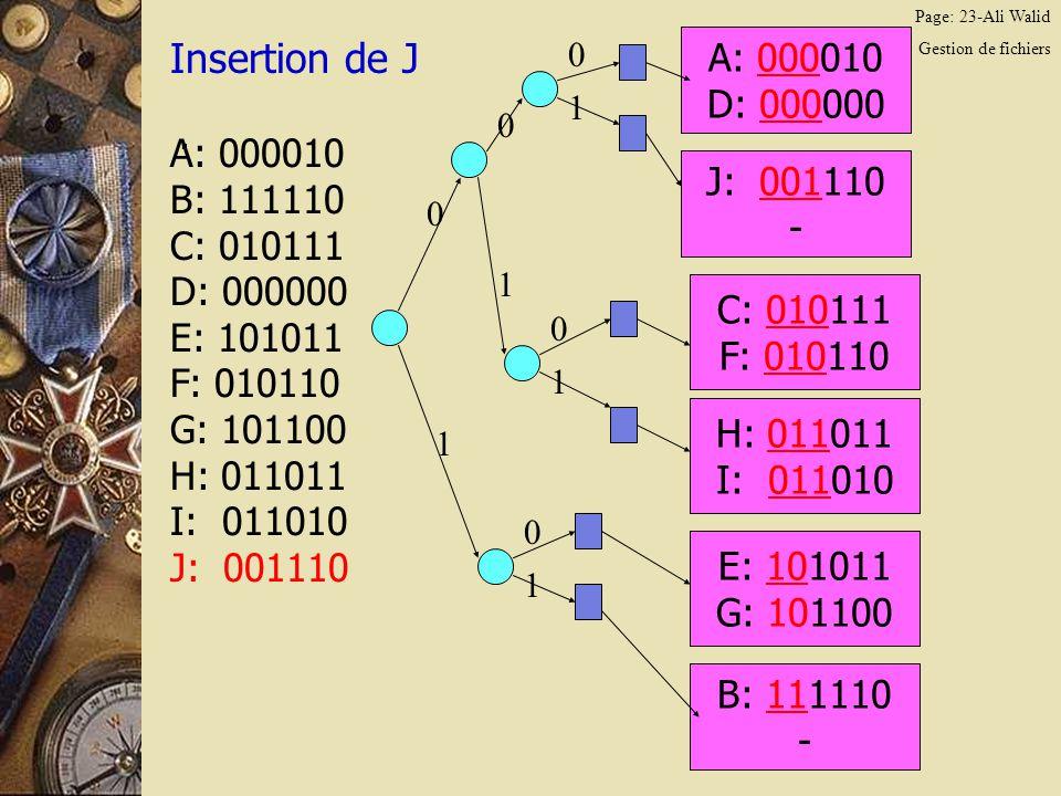 Page: 23-Ali Walid Gestion de fichiers Insertion de J.